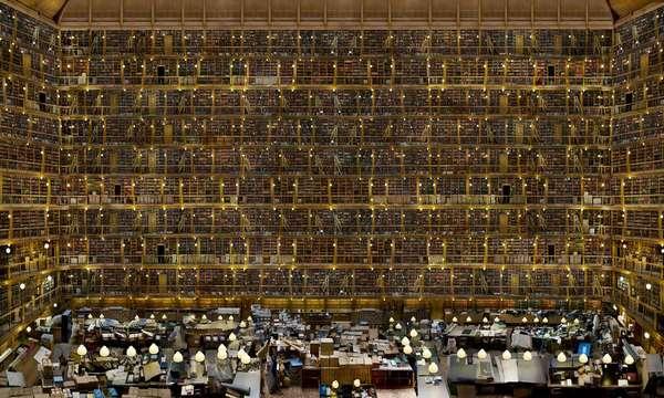 bibliothqueidale2.jpeg