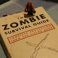 zombieslibrary1.jpg